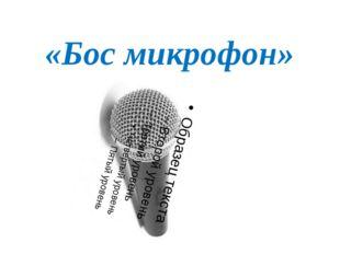 «Бос микрофон»