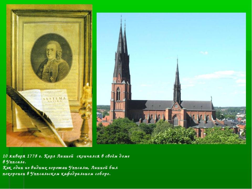 10 января 1778 г. Карл Линней скончался в своём доме в Уппсале. Как один из...