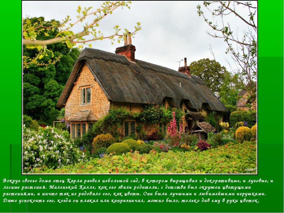 Вокруг своего дома отец Карла развел небольшой сад, в котором выращивал и дек...