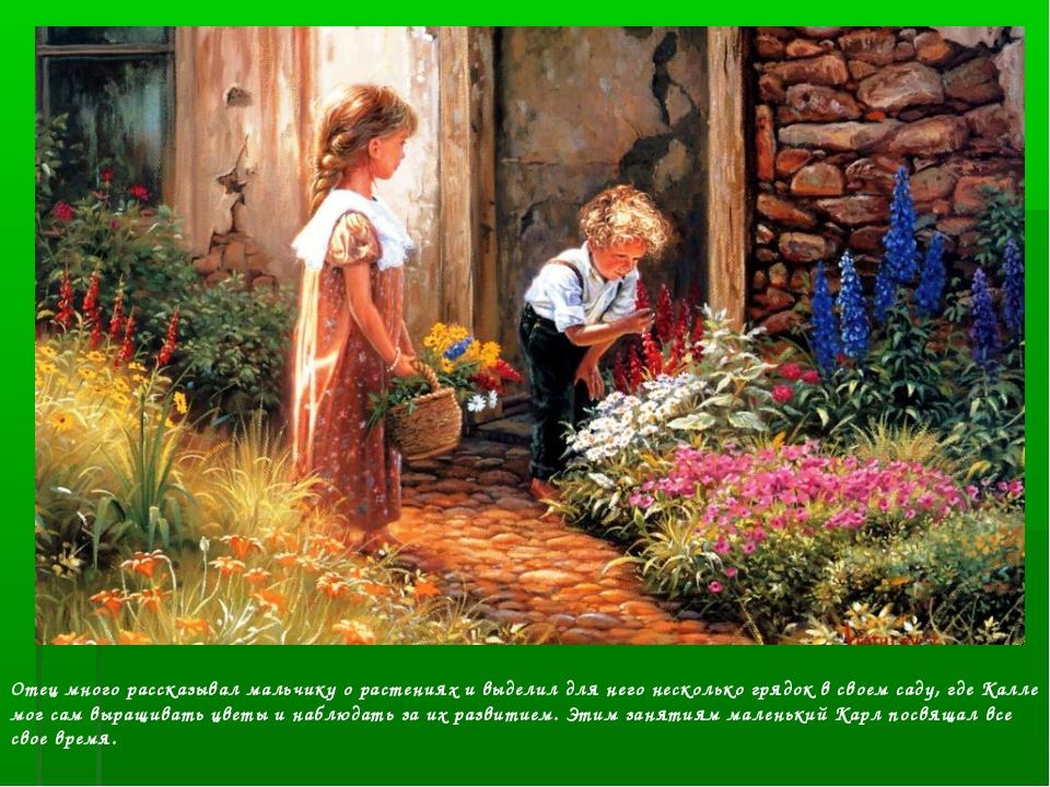 Отец много рассказывал мальчику о растениях и выделил для него несколько гряд...