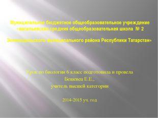 Муниципальное бюджетное общеобразовательное учреждение «васильевская средняя