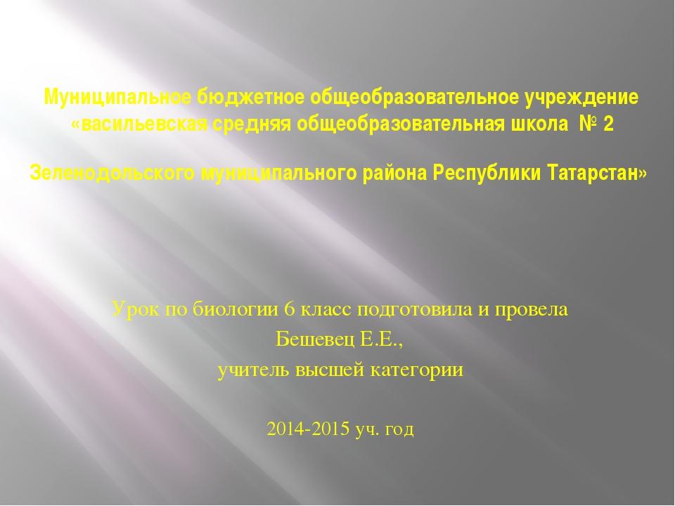 Муниципальное бюджетное общеобразовательное учреждение «васильевская средняя...
