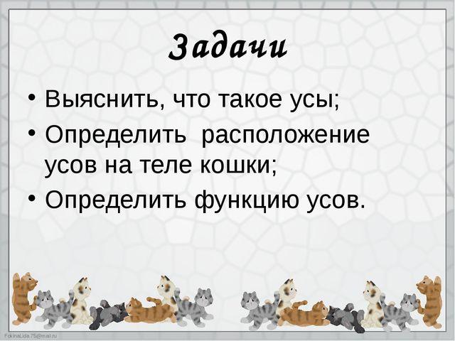 Задачи Выяснить, что такое усы; Определить расположение усов на теле кошки; О...