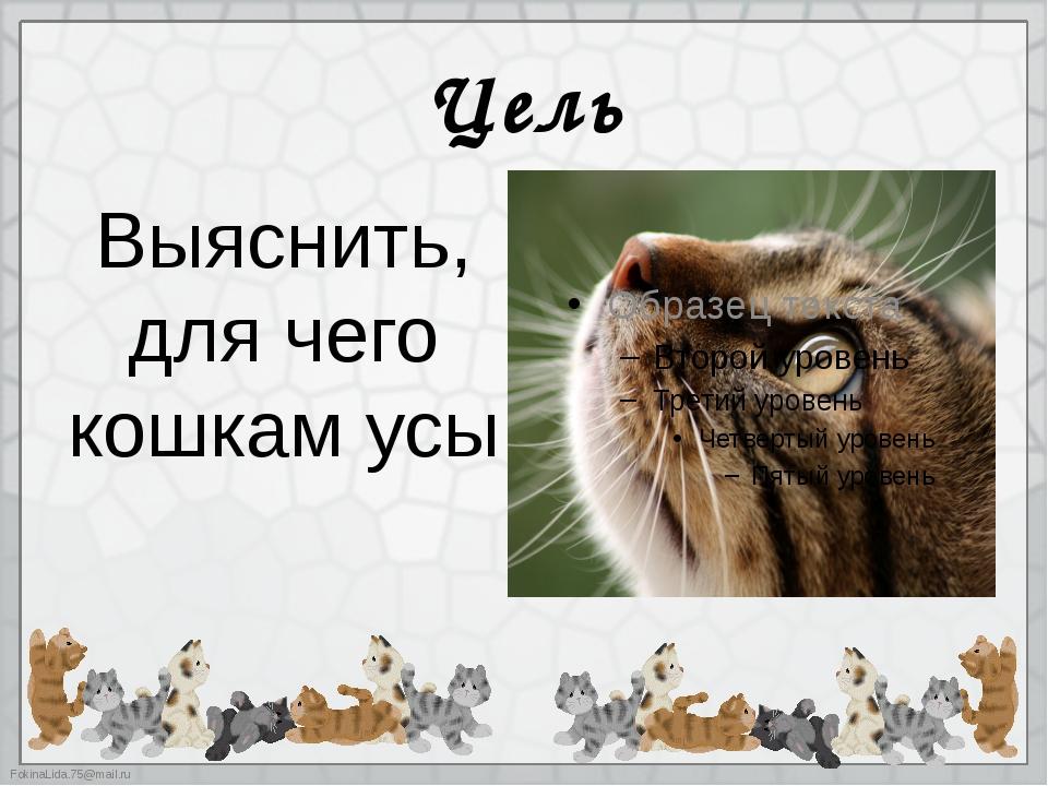 Цель Выяснить, для чего кошкам усы FokinaLida.75@mail.ru
