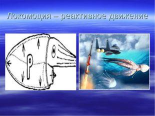 Локомоция – реактивное движение