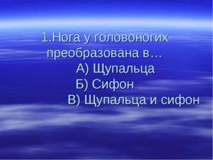 1.Нога у головоногих преобразована в… А) Щупальца Б) Сифон В) Щупальца и сифон
