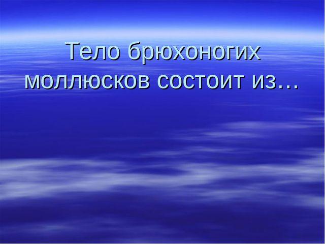 Тело брюхоногих моллюсков состоит из…
