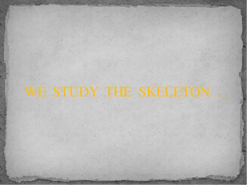 WE STUDY THE SKELETON …