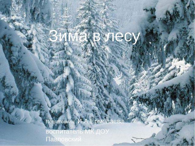 Зима в лесу Подготовила :И.А.Ермолаева воспитатель МК ДОУ Павловский детский...