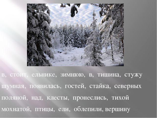 в, стоит, ельнике, зимнюю, в, тишина, стужу шумная, появилась, гостей, стайк...