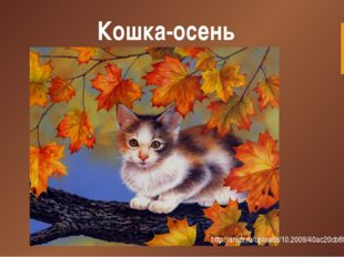 Кошка-осень http://anub.ru/uploads/10.2009/40ac20cb891b.jpg