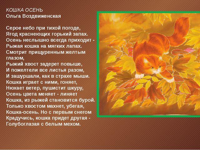 КОШКА ОСЕНЬ Ольга Воздвиженская Серое небо при тихой погоде, Ягод краснеющих...