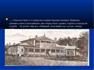 …Спасское было в то время настоящим барским имением. Широкие, длинные аллеи и