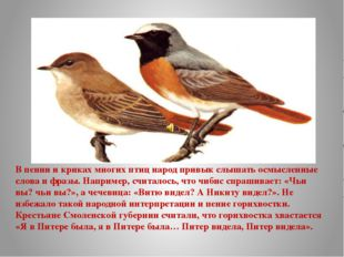 В пении и криках многих птиц народ привык слышать осмысленные слова и фразы.