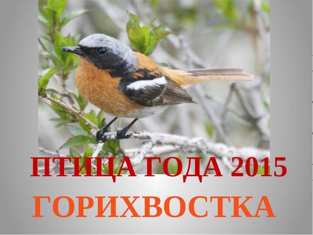 ПТИЦА ГОДА 2015 ГОРИХВОСТКА