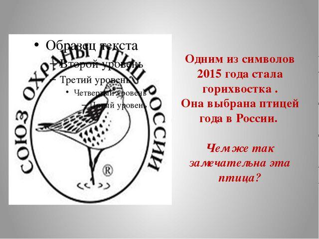 Одним из символов 2015 года стала горихвостка . Она выбрана птицей года в Рос...