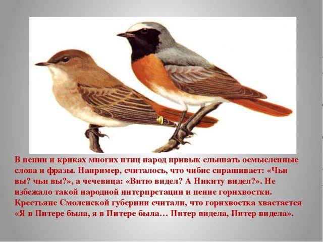 В пении и криках многих птиц народ привык слышать осмысленные слова и фразы....