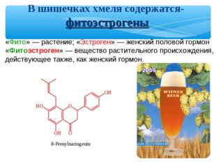 «Фито» — растение; «Эстроген» — женский половой гормон «Фитоэстроген» — вещес