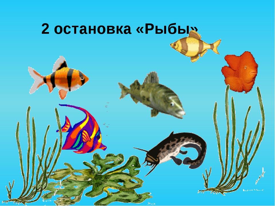 2 остановка «Рыбы»