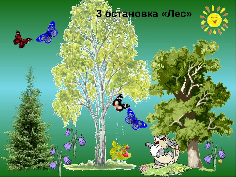 3 остановка «Лес»