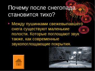 Почему после снегопада становится тихо? Между пушинками свежевыпавшего снега