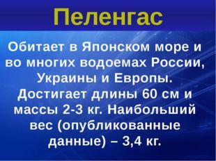 Обитает в Японском море и во многих водоемах России, Украины и Европы. Достиг