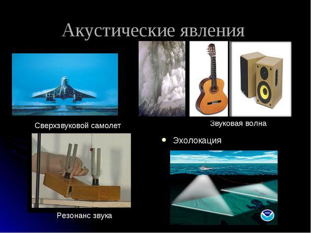 Акустические явления Эхолокация Сверхзвуковой самолет Звуковая волна Резонанс...