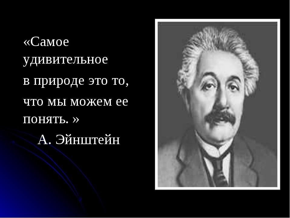 «Самое удивительное в природе это то, что мы можем ее понять. » А. Эйнштейн