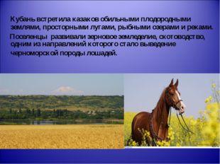 Кубань встретила казаков обильными плодородными землями, просторными лугами,