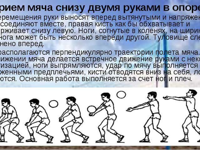 Прием мяча снизу двумя руками в опоре. После перемещения руки выносят вперед...