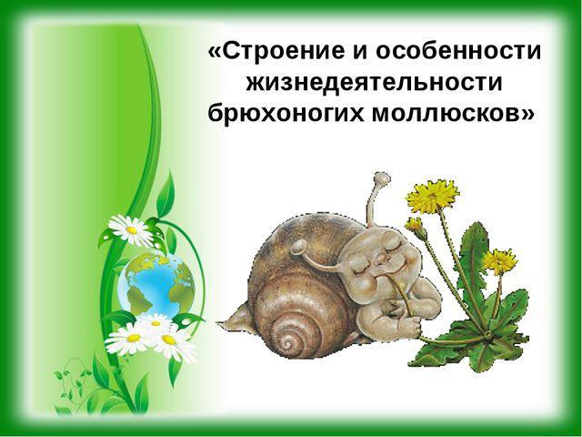 «Строение и особенности жизнедеятельности брюхоногих моллюсков»