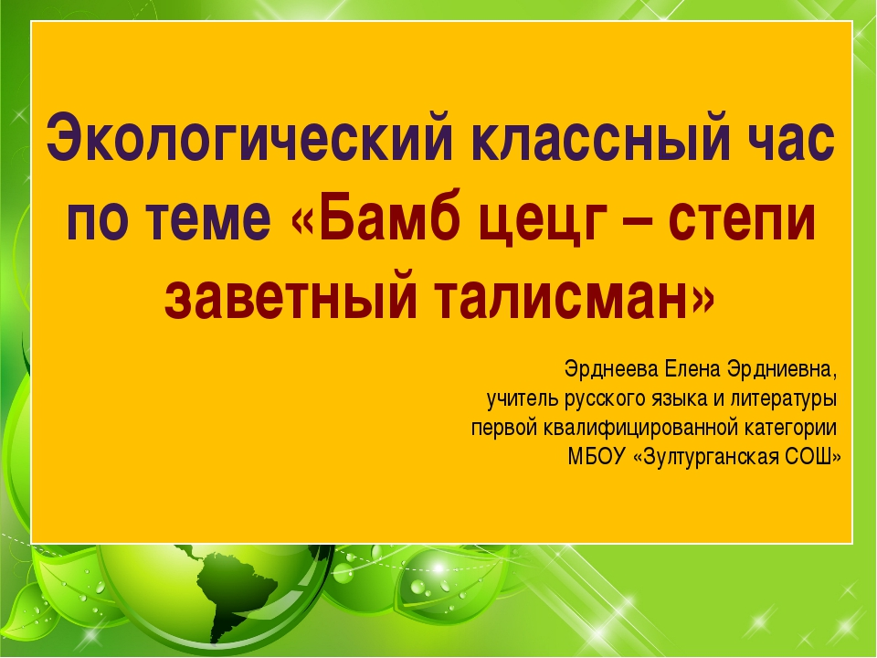 Экологический классный час по теме «Бамб цецг – степи заветный талисман» Эрд...
