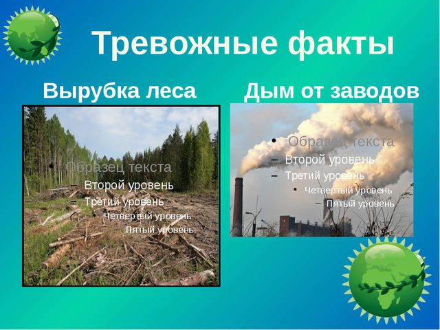 Тревожные факты Вырубка леса Дым от заводов