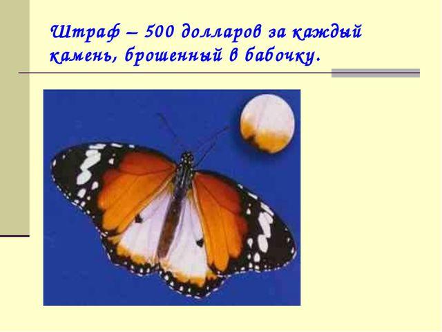 Штраф – 500 долларов за каждый камень, брошенный в бабочку.