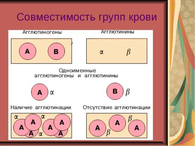 Совместимость групп крови