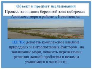 Объект и предмет исследования Процесс заиливания береговой зоны побережья Азо