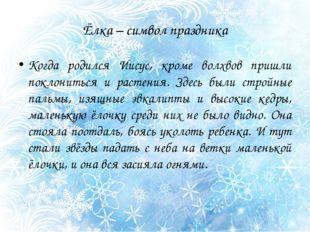 Ёлка – символ праздника Когда родился Иисус, кроме волхвов пришли поклониться