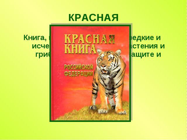 КРАСНАЯ Книга, в которую занесены редкие и исчезающие животные, растения и гр...