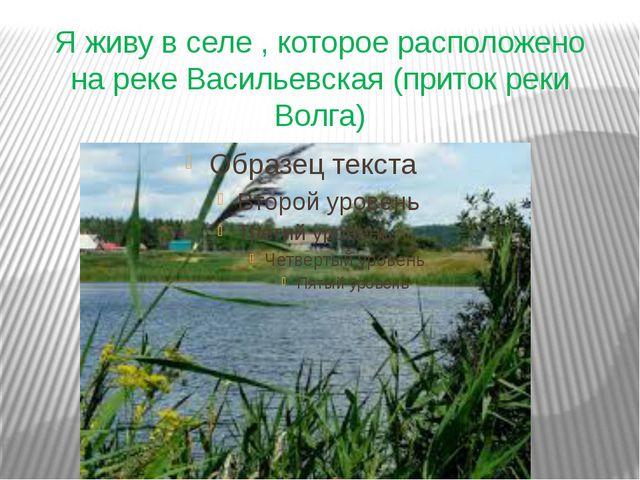 Я живу в селе , которое расположено на реке Васильевская (приток реки Волга)