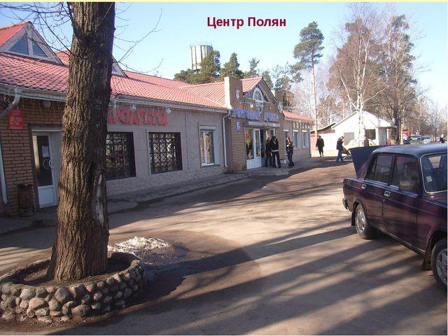 Центр Полян