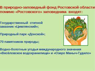 В природно-заповедный фонд Ростовской области помимо «Ростовского» заповедник
