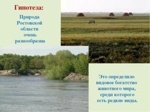 Природа Ростовской области очень разнообразна Это определило видовое богатств