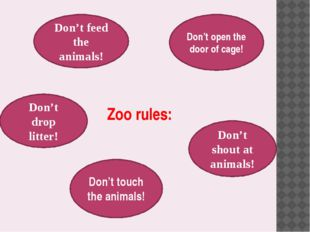 Zoo rules: Don't feed the animals! Don't open the door of cage! Don't drop li