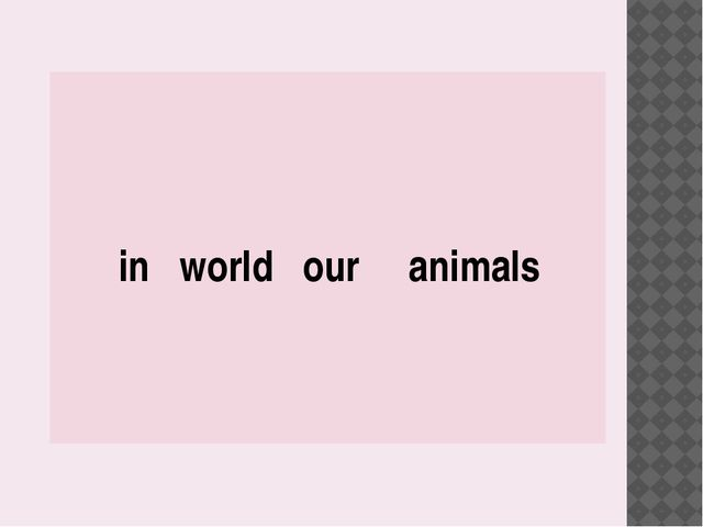 in world our animals