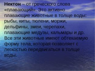 Нектон – от греческого слова «плавающий». Это активно плавающие животные в т