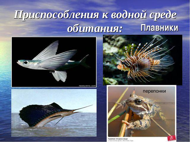 Приспособления к водной среде обитания: Плавники