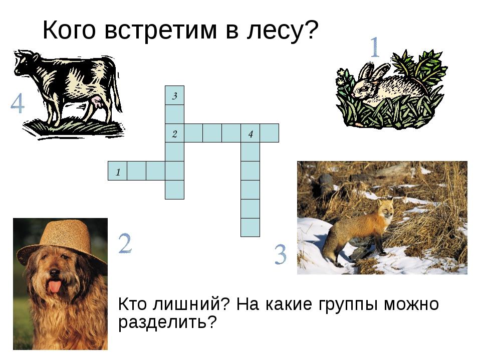 Кого встретим в лесу? Кто лишний? На какие группы можно разделить? 1 2 3 4