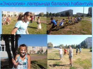 «Экология» лагерында балалар һабантуйы