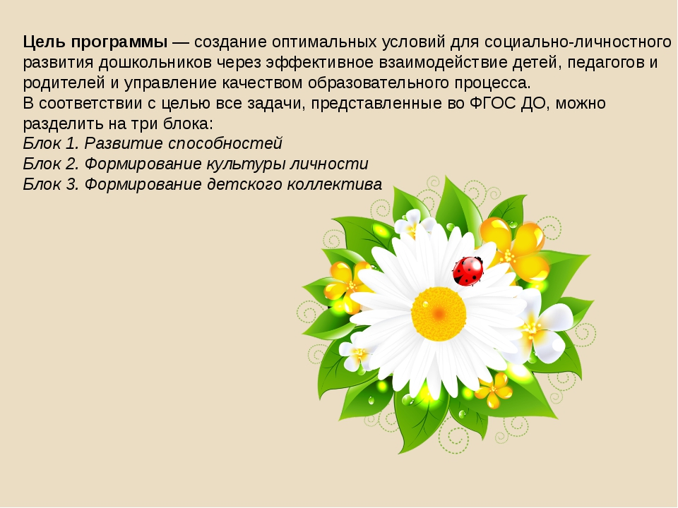 Цель программы — создание оптимальных условий для социально-личностного разви...