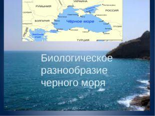 Биологическое разнообразие черного моря Биологическое разнообразие черного м